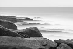Endicott_03_Lindsay_Dieterich_coastal_landscape