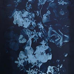 Example of a cyanotype image
